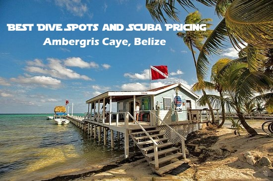 Best Dive Spots in Ambergris Caye/ Scuba Pricing
