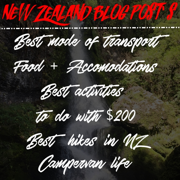 Guide to new zealand - New zealand blog post