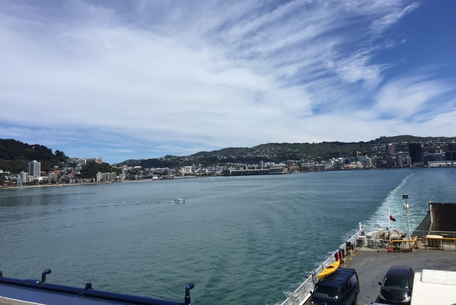 Wellington from Ferry
