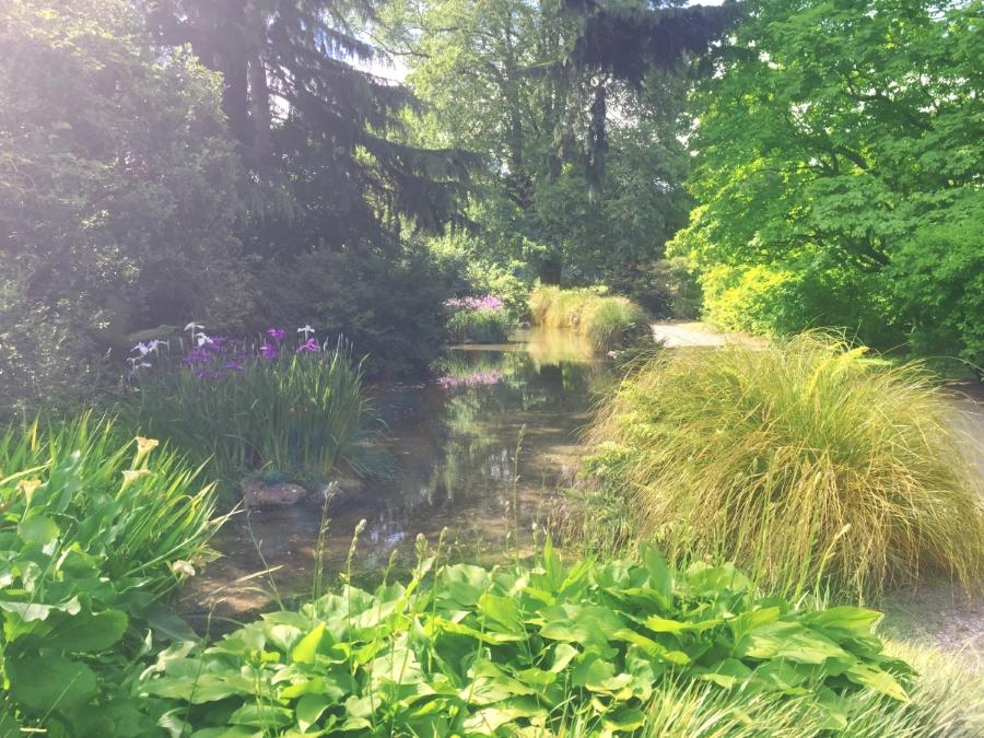 christchurch-botanical-garden-edited1
