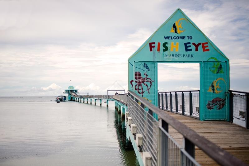 Guam itinerary- Fish eye