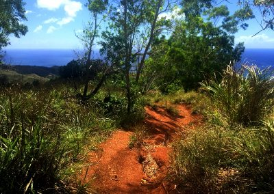 For Treking Mount Jumullong Summit