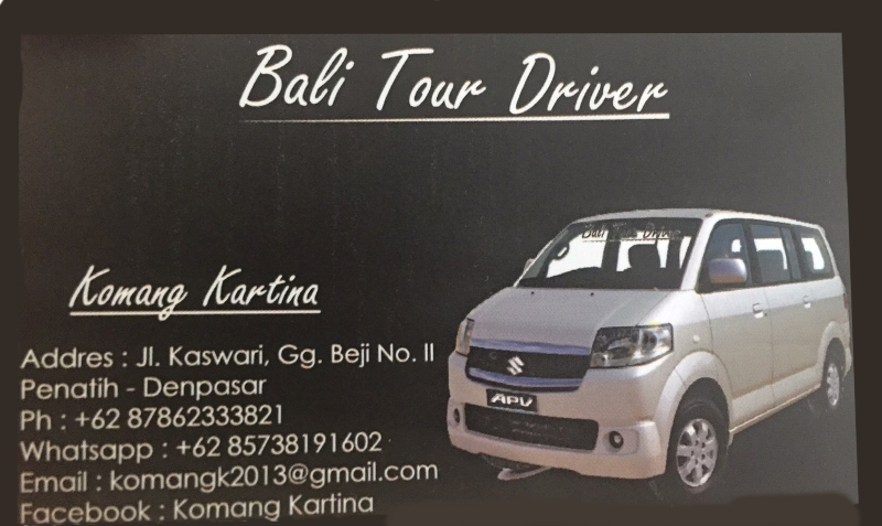 Bali local transportation - Bali tour driver