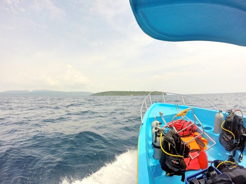 Boat to Menjangan Island